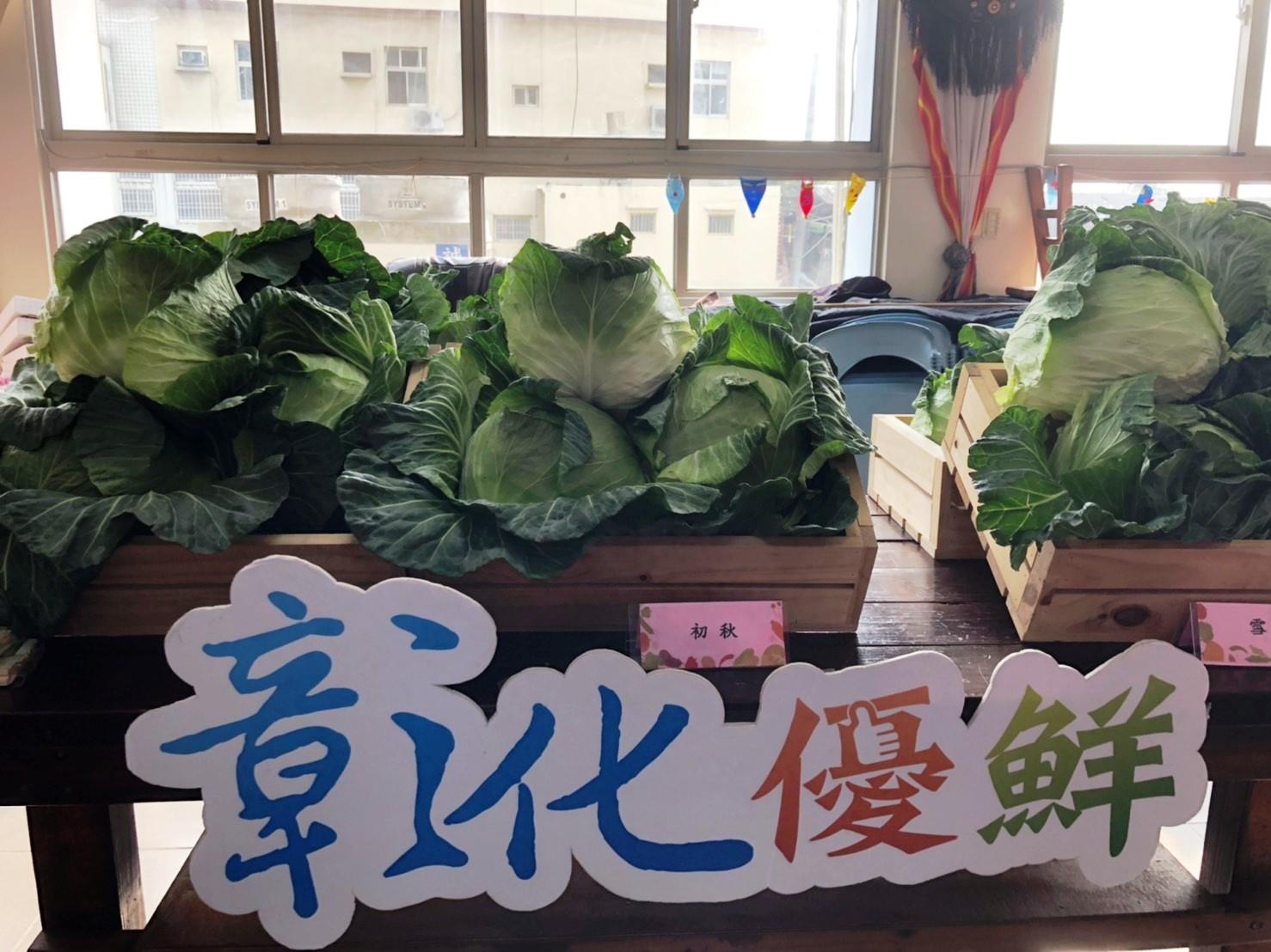 縣府促銷高麗菜再出招  北上賣農產歡迎採嘗鮮 高麗菜水餃大賽歡迎報名
