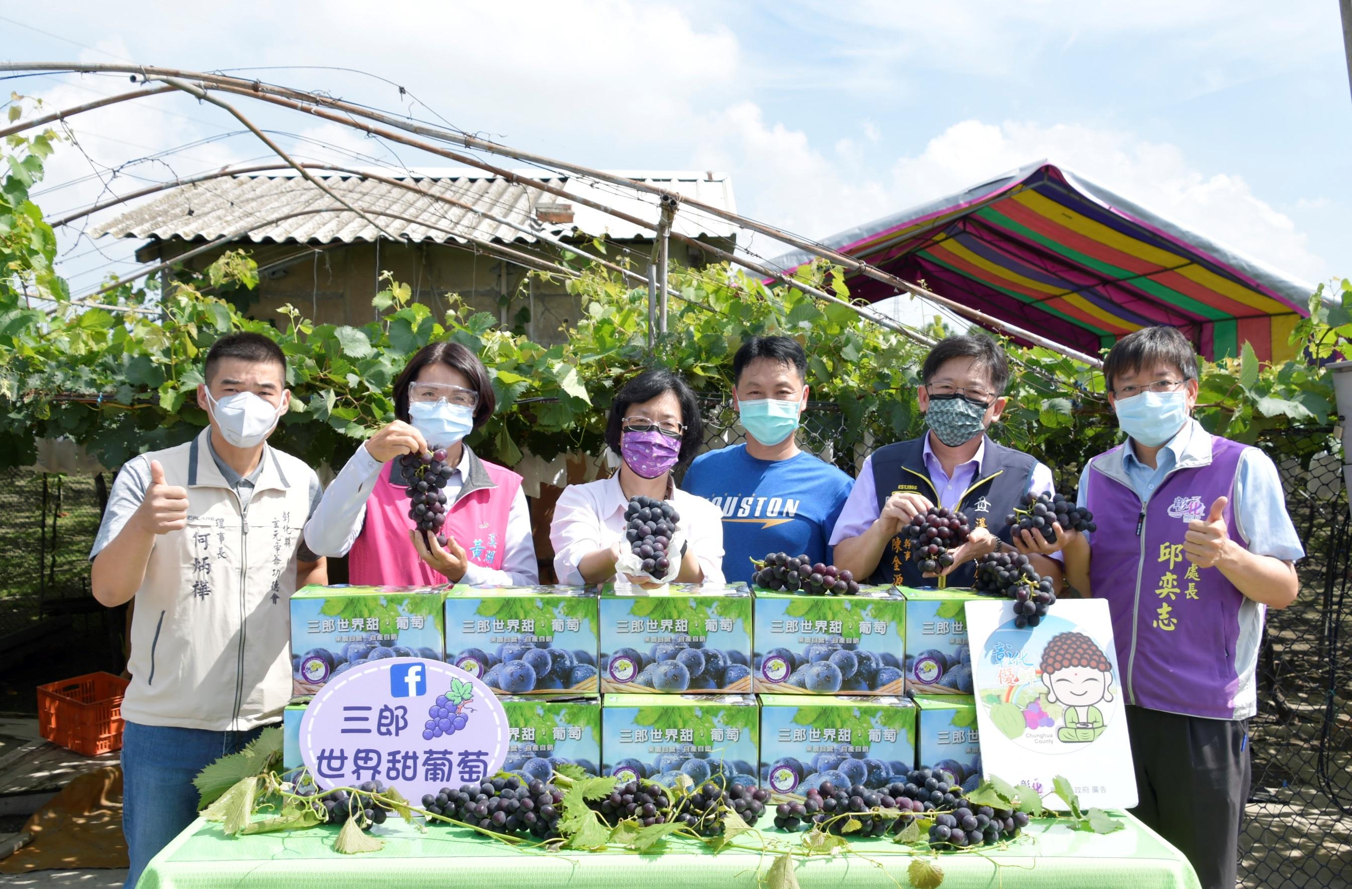 農業產業關懷 參訪溪湖鎮葡萄果園  吃在地、享當季 力挺農友 歡迎訂購